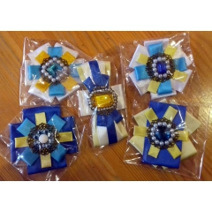 Brooch in colors of the city flag (handmade)